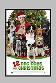 12 Dog Days Till Christmas (2014) - Dove Channel (Amazon Prime)